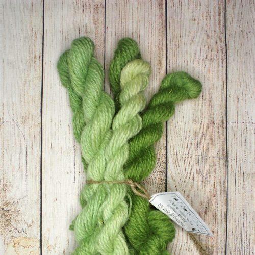 Gradient Green Zestaw